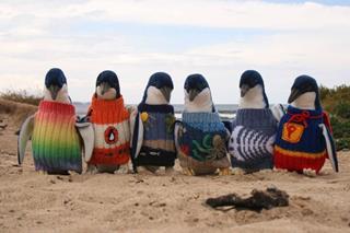 Đan áo len cho chim cánh cụt
