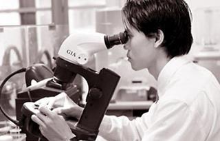 Thích ngành giám định pháp y, ADN, vân tay... thì thi vào trường nào?